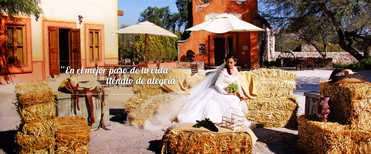 eventos-bodas-vinedos-azteca091