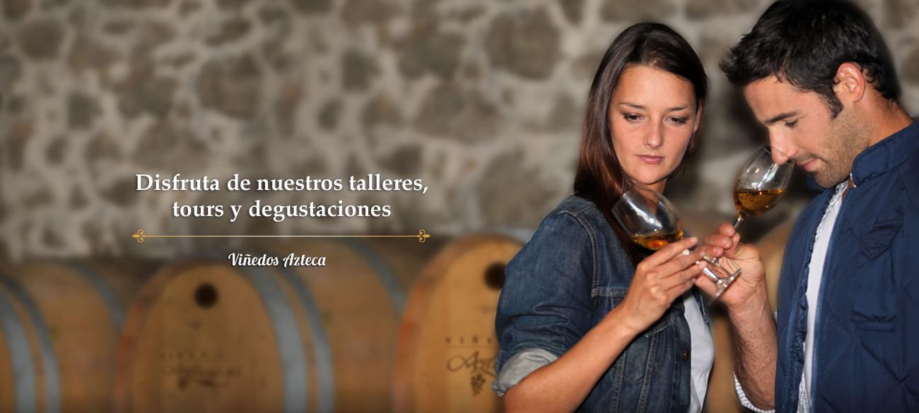 talleres-degustaciones-vino-vinedos-azteca1
