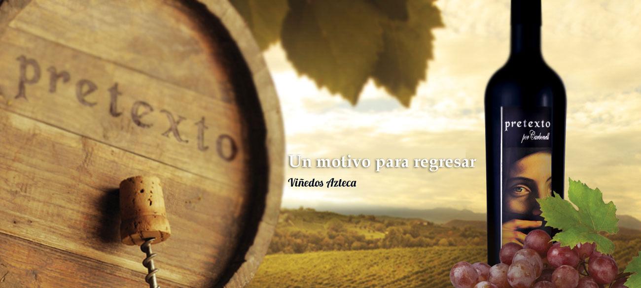 vino-pretexto-vinedos-azteca1
